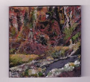 Lichen © (548x502)