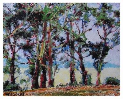 Seven Trees © (640x512)